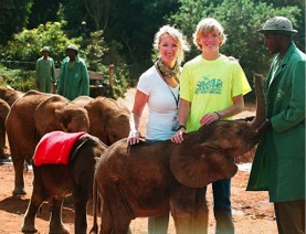 baby elephant Foster program